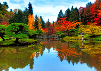 Fall at the Japanese Gardens - Seattle, WA U.S.A.