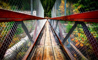 Walking Bridge - North Cascades, WA U.S.A.